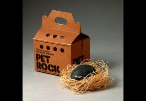 620-old-gifts-for-christmas-trends-crazes-pet-rock.imgcache.rev1354908036049